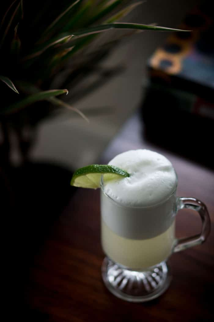 Gin Fizz Cocktail Recipe without Sugar - Low Carb, Sugar Free, Healthy Cocktail